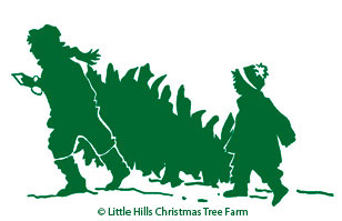 Little Hills Christmas Tree Farm in Petalum